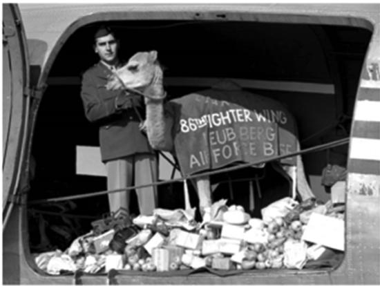 """Das Bild zeigt das Kamel """"Clarence"""", das zusammen mit mehr als drei Tonnen Süßigkei-ten nach West-Berlin geflogen wurde."""